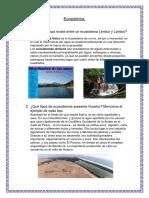 Ecosistema Juana