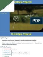 Aula Histologia e Organologia Vegetal