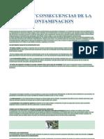 Causas de La Contaminacion DANIEL HINCAPIE7-3