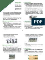 Manualdeplantacionesforestales[1]