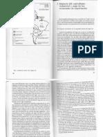 Cap.2 Impacto Del Capitalismo Industrial y Auge de Las Economias de Exportación - BEYHAUT