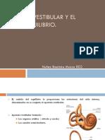Apaarato Vestibular