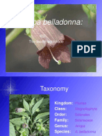 Vdokumen.com Atropa Belladonna the Deadly Nightshade Taxonomy Kingdom Plantae Class(1)
