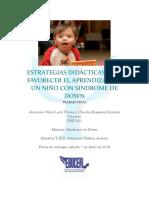 Estrategias Didácticas para Alumno con Síndrome de Down