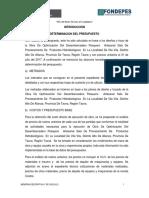 Determinacion Del Presupuesto (1)