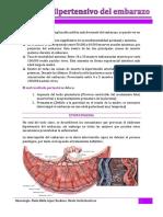 12. Sindrome Hipertensivo Del Embarazo