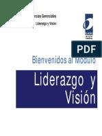 13255334 Liderazgo y Vision