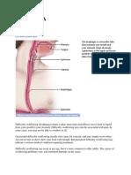 DYSPHAGIA mayoclinic