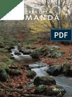 Demanda_07.pdf