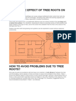What is the Effect of Tree Roots on Building