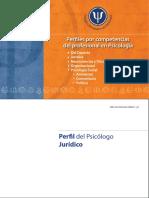 Perfil Psi Juridico.pdf
