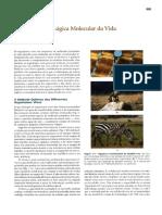 INTRODUÇÃO_A_BIOQUIMICA.pdf