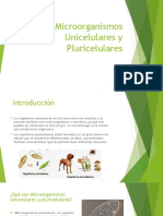 Microorganismos Unicelulares y Pluricelulares