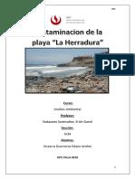 Analisis Ambiental Problema La Herradura