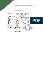 Copy of Chemistry Folio