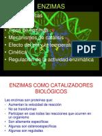 Enzimas_1