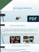 Malacología Medica.pptx (1).Pptx