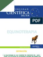Equinoterapia Introduccion - UCSUR
