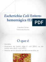 EHEC e EAEC