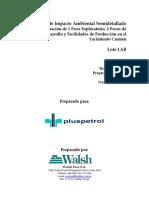 EIA-sd Carmen.pdf