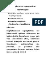 Staphylococcus Saprophyticus