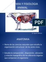 Anatomia y Fisiologia 0113 0003