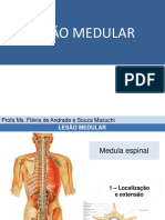 LESÃO+MEDULAR+parte+1
