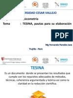 pautas_tesina