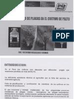 PLAGAS  PALTO ENTOMOLOGIA II.pdf