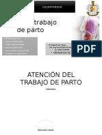 Atencion de Trabajo de Parto GPC