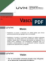 4.1 Vasculitis