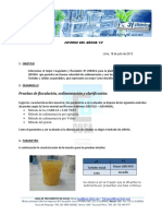 Informe Qroma (2)