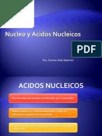 12. Nucleo y Acidos Nucleicos