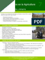 Agricola - Peligros de Poda y Amarra