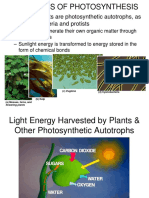 Photosynthesis - Huss.ppt