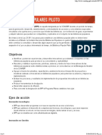 BIBLIOTECAS POPULARES PILOTO - CONABIP.pdf