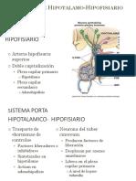 02. ENDOCRINOFISIOLOGÍA Eje Hipotalam-hipofisiario
