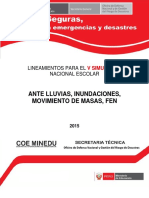 Protocolo Fen