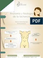 Anatomía y Fisiología Final2
