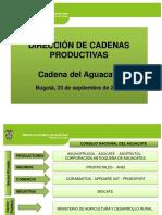 004 - D.C. - Presentacion de La Cadena Del Aguacate