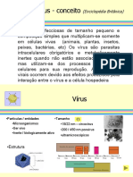 Virologia_estrutura