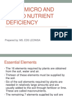 Plant Micro and Macro Nutrient Deficiency