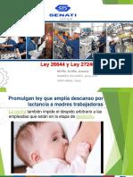 Ley N°26644 Y Ley N°27240