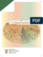 Prod Guide Sorghum