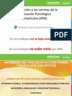 Encuentro Sincrónico APA