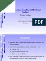 Membrane Swelling