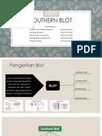 PPT Southern Blot