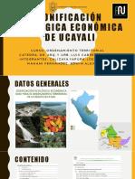 Zonificación Ecológica Económica de Ucayali - Presentacion