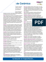 dicer1.0.pdf
