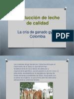 Produccion de Leche Por Campaña de Las Vacas de Razaa Gyr.docx